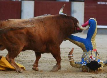 El colombiano Ritter resulta herido por el cuarto toro en Las Ventas