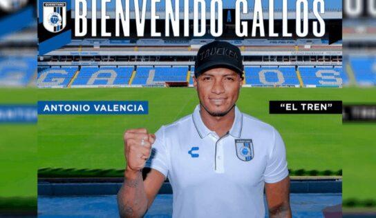 Querétaro anuncia a Antonio Valencia como refuerzo
